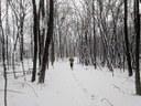 rct-snow1.jpg