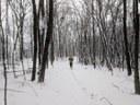 rct-snow1b.jpg